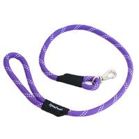 Climbers Dog Leash